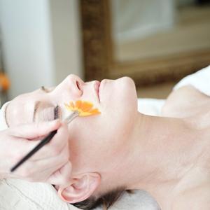 Dr Hauschka Firming Treatment